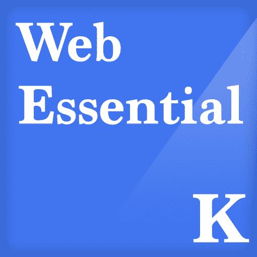 Web Essential WordPress Website Support